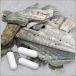 八雲風化貝化石 善玉カルシウム